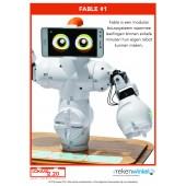 Complete Lesmap Robotica Bovenbouw PO